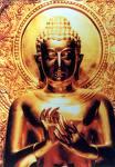 http://murtadinkafirun.forumotion.net/users/3212/29/87/05/album/buddha10.jpg